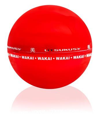 Wakai Anti-Aging Tagescreme