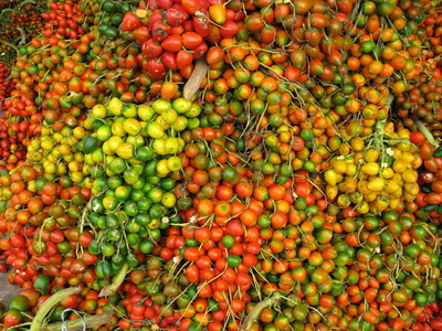 Palmöl Naturkosmetik